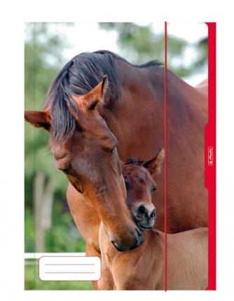 Herlitz Sammelmappe A3, Pferd