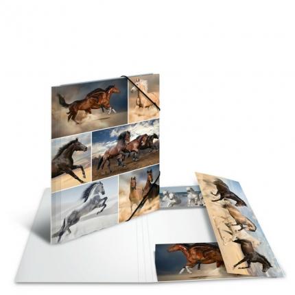 Kartonmappe A4, Pferde