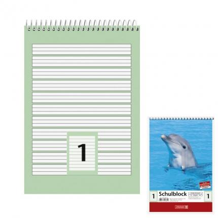 Schulblock Lineatur 1, DIN A5, Brunnen