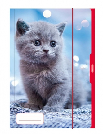 Herlitz Sammelmappe A3, Katze