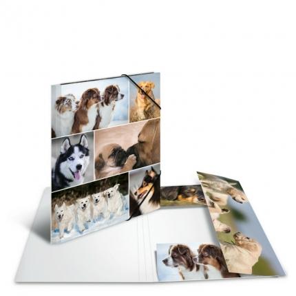 Kartonmappe A4, Hunde